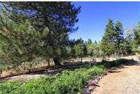 Dovid Oved Retreat Center, Running Springs, CA