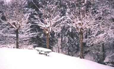 The Quiet Place, Bakersville, NC