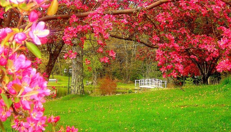 Peace Village Learning and Retreat Center, Hunter, NY