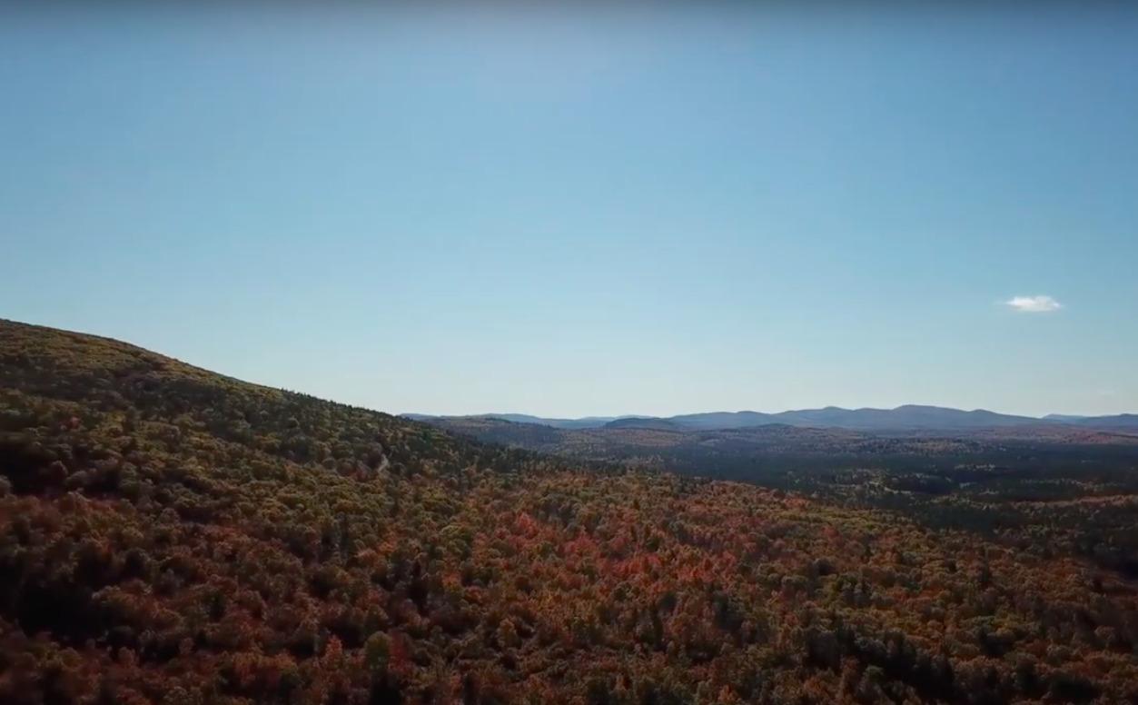 Peaceful Mountainside Eco-Retreat in Western Maine